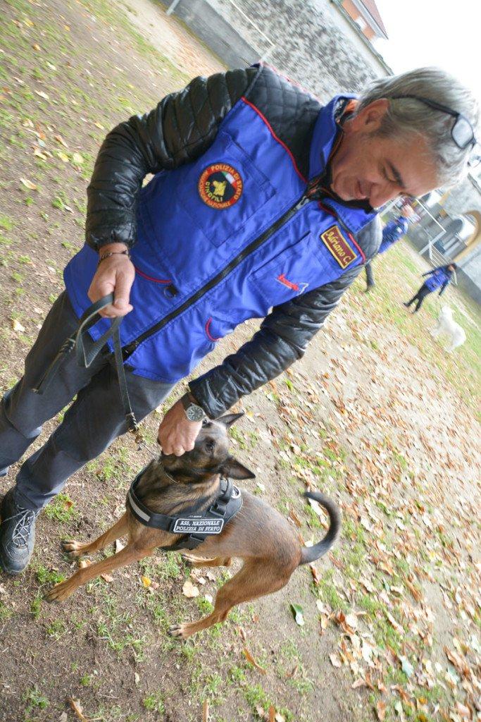 Issima è Addestrata alla ricerca olfattiva delle Cimici dei Letti - Seminario Il Cane: Lavoro e Compagnia, Lombriasco, 17.10.2015, Scuole Salesiane
